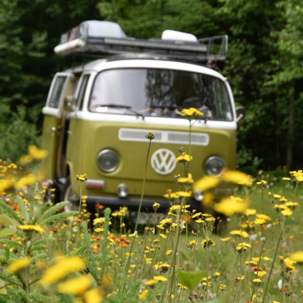Kamping w miejscowości Wawa. Na zdjęciu Samochód marki VW transporter (Ogórek) oraz kwiecista łąka. Kwiaty żółte, białe i czerwone.