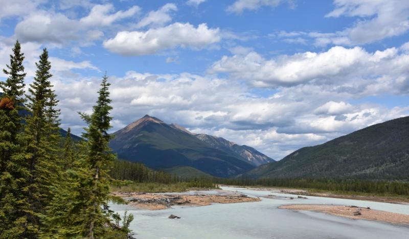 Kanada- widok na dolinę. Na pierwszym planie sosny. i rozlewisko rzeki. W tle góry i niebo pokryte cumulusami.
